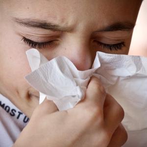 もしかしたら稲が原因かも?風邪と勘違いしがちなこの時期の鼻水には注意が必要!