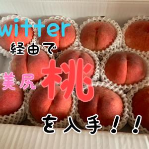 Twitter経由で 美尻な【桃】 を手に入れました!!