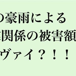 7月の豪雨による農業の被害額がヤヴァイ!!