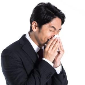 花粉症予防に効果のある羅漢果顆粒、もうマスクは要らない!