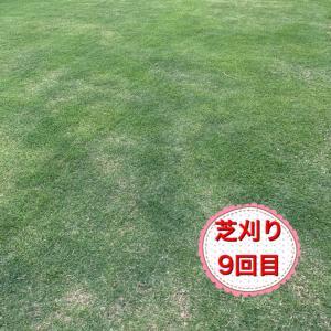 芝刈り9回目 我が家の土壌問題