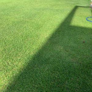 芝刈り22回目 水着で芝刈りすると最高に気持ちいい