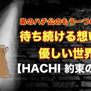 【HACHI 約束の犬】忠犬ハチ公の実話を描いたハリウッドリメイク映画