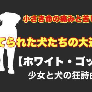 【ホワイト・ゴッド 少女と犬の狂詩曲】異色のパルムドッグ受賞作