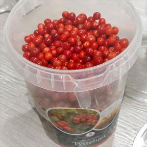 北欧でポピュラーな秋が旬のリンゴンベリー【簡単、甘酸っぱいジャムの作り方】