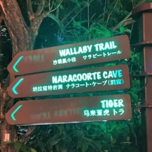 【世界初】シンガポールの夜の動物園【Night Safari】~後編~