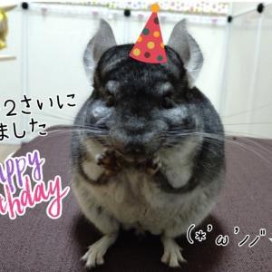 チャッピーの誕生日プレゼント