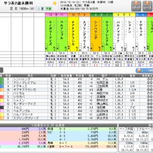 闘いの記録10.19-東京2R2歳未勝利