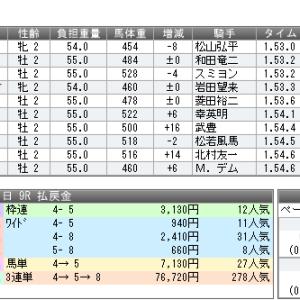 大回収か惨敗か闘いの記録11/16,17