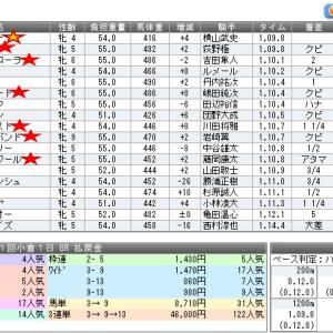 大回収か惨敗か闘いの記録1/18,19