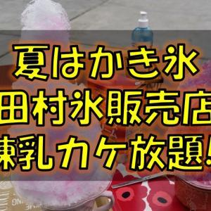 かき氷で暑さを吹き飛ばせ!八戸市小中野の田村氷販売店に行ってきました!
