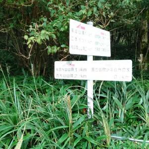 ススキ大好き曽爾村の旅2 山好きになったきっかけの後古光山編