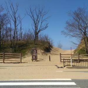 春のもっちー登山部1 鳥取砂丘とポアロ編