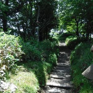 山奥へ行ってます。