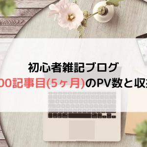 【ブログ運営】初心者雑記ブログの100記事目(5ヶ月)のPV(アクセス数)と収益