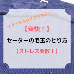 【爽快!】セーターの毛玉のとり方【ストレス発散!】