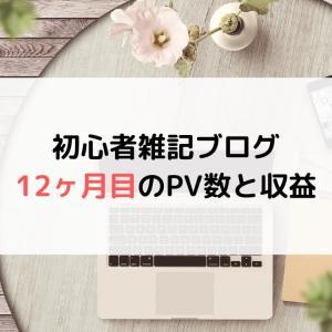 【ブログ運営】初心者雑記ブログの12ヶ月目(1年)のPV(アクセス数)と収益