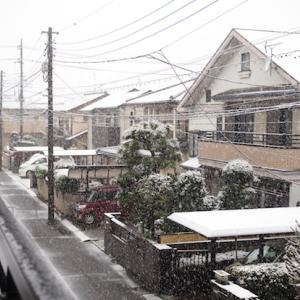 雪、雪、、、