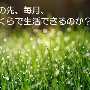 九州地方では、いくらで生活できるのか?現在の生活から推計してみる。