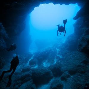 生きた深海魚・深海生物に会える!オススメ水族館6選