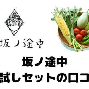 【無添加100%】坂ノ途中のお試しはどう?約6種類の野菜が食べれて勧誘は一切なかった!