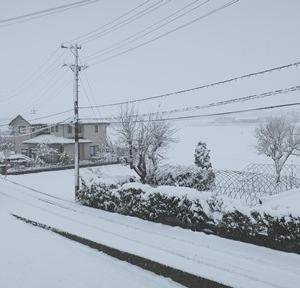 まさかの雪!