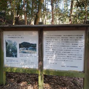 木井神社のフォトギャラリー①アップしました
