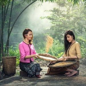 肌美人も目指していけ腸内環境も整えていける豊富な栄養を多く含んだ米ぬかを材料にした商品