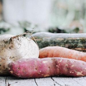 2021年の少食生活計画まとめ。腸活とゆる菜食の習慣化について
