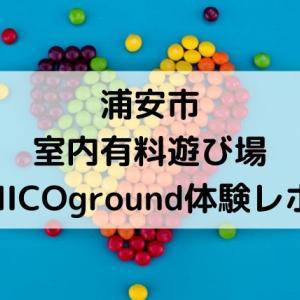 浦安の新しい室内遊び場!「NICOground」料金や施設内部を紹介します。