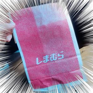 【しまむら】衝撃の100円で再入荷されたコラボ商品!