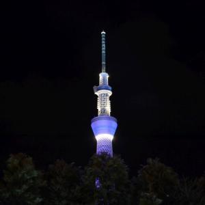 東武ワールドスクウェアのライトアップ