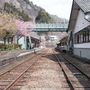 水沼駅の雅桜と神戸駅の花桃2021