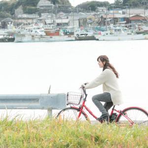 LINEほけんの「自転車ライフ安心保険」に加入!100円/月 特徴は?