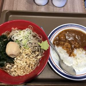 【食レポ】上板橋 富士そば 冷し味玉セット ミニカレー付き 500円