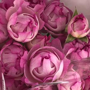 お礼と素敵なお花との出会い