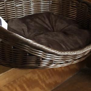 ☆ダイソー☆収納に使いたい犬用ベッド