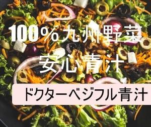 野菜不足に100%九州産野菜の国産青汁!!とても飲みやすいですよ