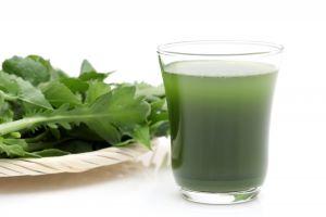 青汁を考える 野菜不足解消 健康管理 人気の秘密