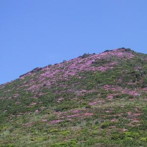 【過去レコ】平治岳(1,642.8m)