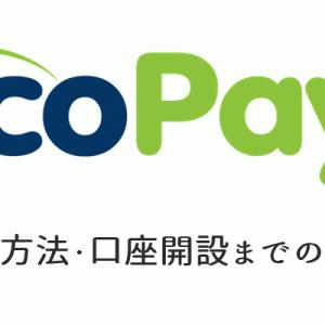 エコペイズ(ecoPayz)の登録方法 口座開設の流れを細かい部分まで解説!