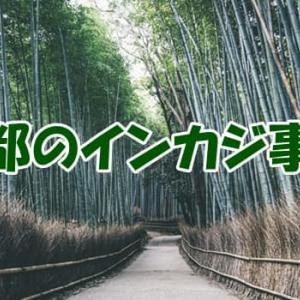 京都のインカジ事情は?店の場所や摘発ニュース・オンラインカジノ情報まとめ