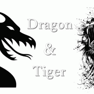 ドラゴンタイガーのルールや遊び方、攻略法、遊べるおすすめオンラインカジノ情報まとめ