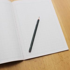 【ネトナンで即る方法】の有料noteを女が読んでみた!