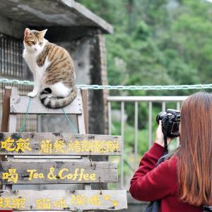台湾人女性と出会い方7選 美女と出会うおすすめの方法を解説