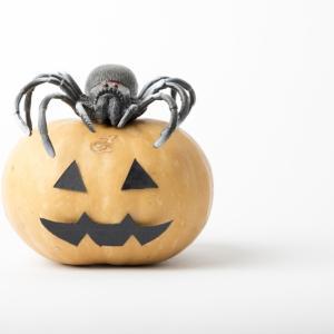 10月31日はハロウィンであれども、いつも通りの一日であってもいいのではなかろうか。