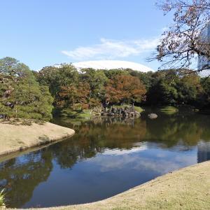 東京都立庭園探訪録 第参園目「小石川後楽園」~現代の代表的施設の陰に隠れた名園~