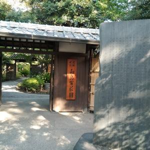 東京都立庭園探訪録 第肆園目「向島百花園」~江戸のはずれの小さな楽園~