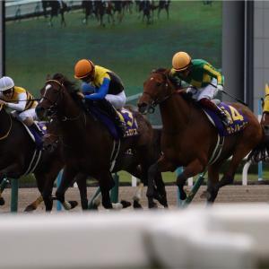 菊花賞を反省しよう。 重賞回顧と明日の推奨馬