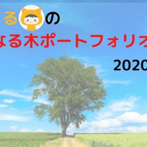 りーまるの金のなる木ポートフォリオ【2020年6月】